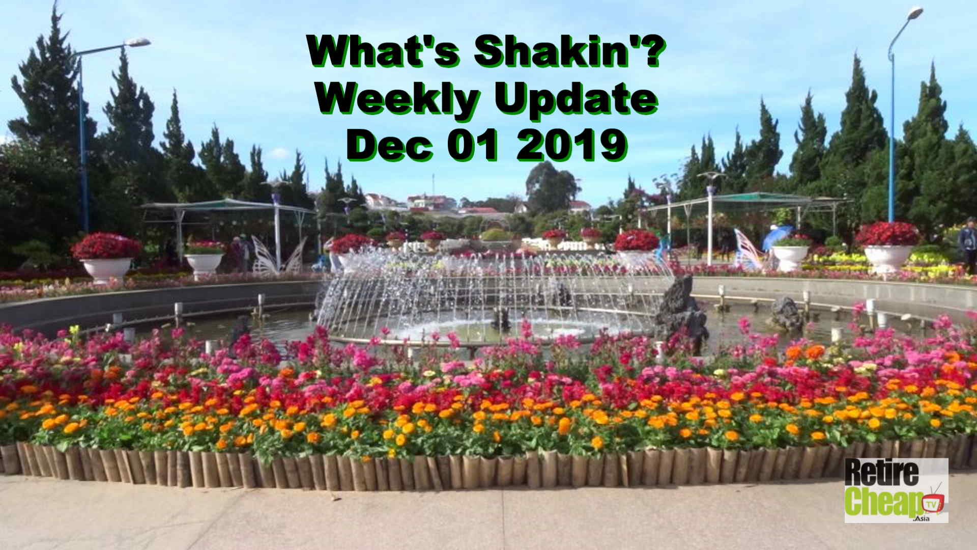 What's Shakn'? Week December 01 2019
