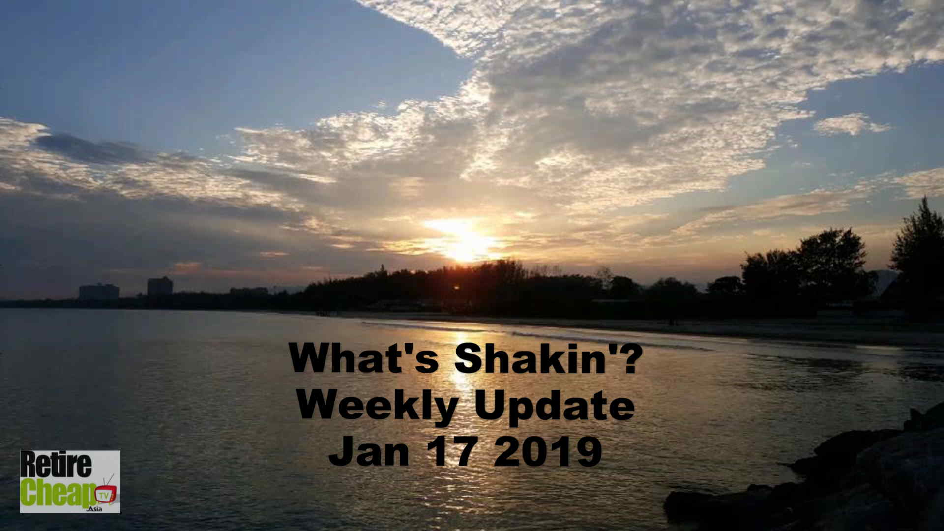 What's Shakn'? Week Jan 17 2019