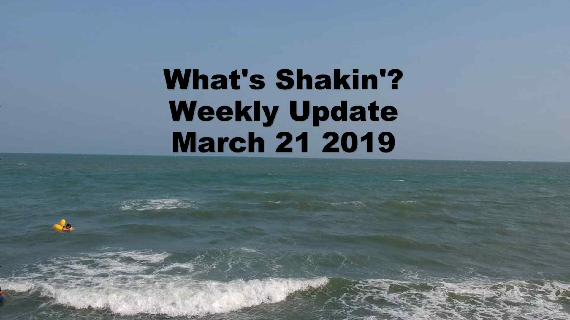 What's Shakn'? Week March 21 2019