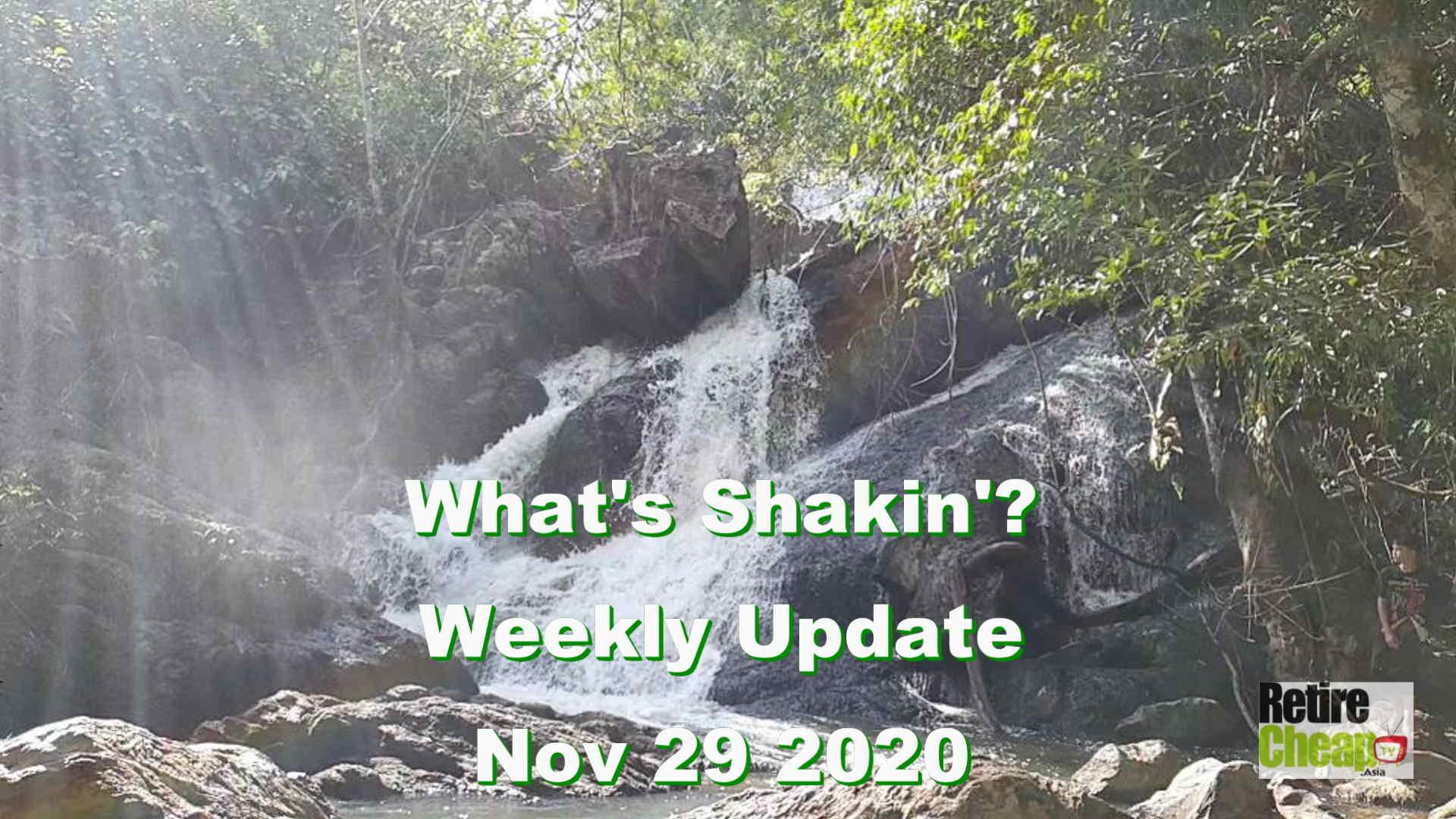 What's Shakn'? Week Nov 29 2020